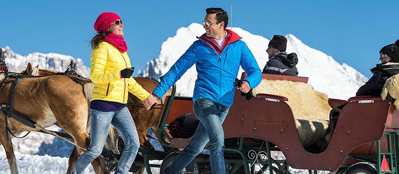 horse-sleigh-2