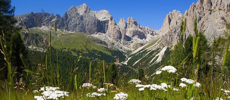 Ciampedie-Val-di-Fassa-summer
