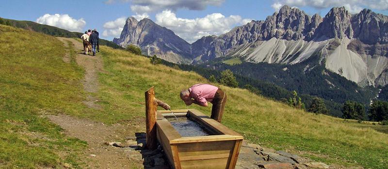 trekking-plose-view
