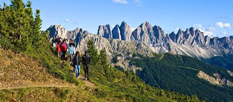 trekking-plose