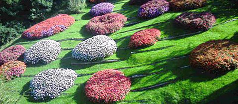 trauttmansdorff-flowers