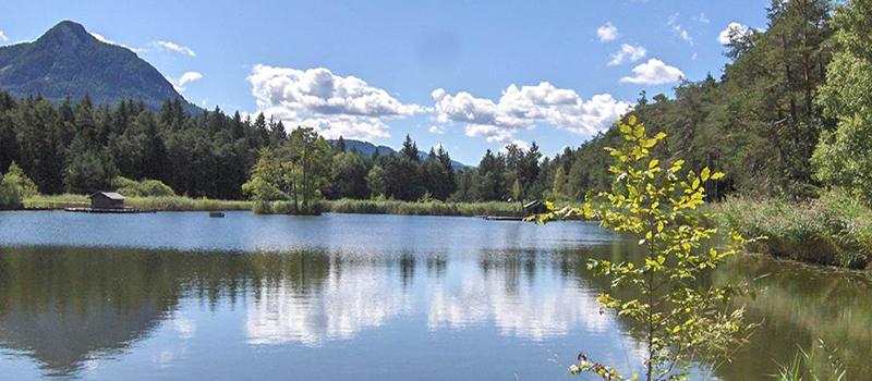 walking-fie-lake-view