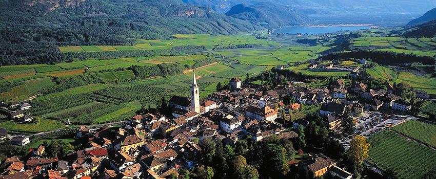 wine-road-caldaro